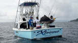 Pacific Sailfish Caught on a Popper