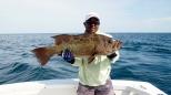 A nice grouper
