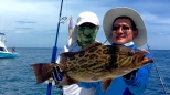 Another Grouper